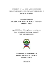 thesis on inducible clindamycin resistance